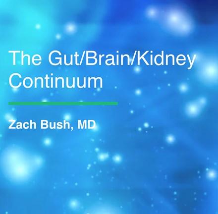 ACIM Fellowship Webinar Series - The Gut/Brain/Kidney Continuum by Zach Bush, MD WGBKC